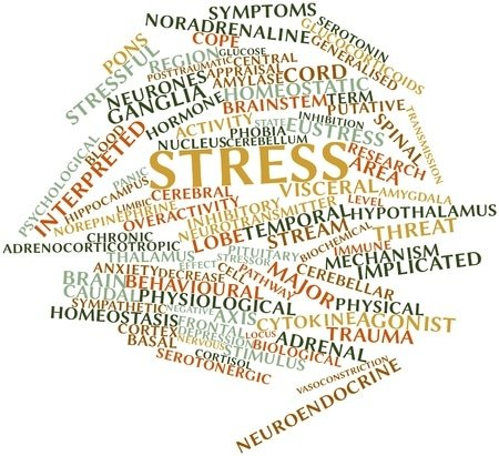 15995959 - abstract word cloud for stress with related tags and terms